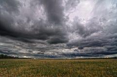 Осенние поле и небо Стоковое Изображение RF