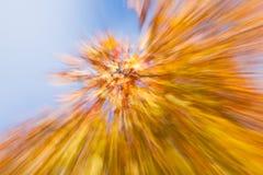 Осенние фейерверки Стоковые Изображения RF