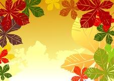 осенние цветастые листья бесплатная иллюстрация