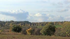 Осенний ландшафт в Германии стоковые изображения rf