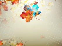 Осенний кленовый лист сделанный треугольников 10 eps Стоковое Фото