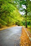 Осенний ландшафт зоны Kakheti Стоковое Изображение RF