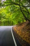 Осенний ландшафт зоны Kakheti Стоковое фото RF