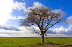 осенний ландшафт Стоковые Фото