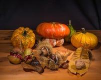 Осенний натюрморт 7 Стоковые Фотографии RF