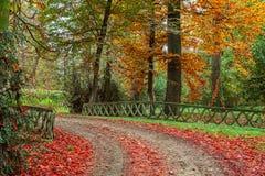 Осенний парк в Италии Стоковая Фотография