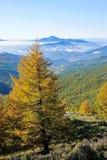 Осенний пейзаж горы Стоковые Изображения