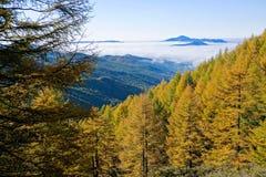 Осенний пейзаж горы Стоковые Фото