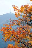 Осенний пейзаж горы Стоковая Фотография