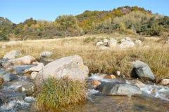 Осенний пейзаж горы Стоковое фото RF
