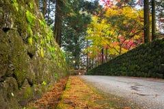 Осенний пейзаж национального парка Nikko Стоковые Изображения RF