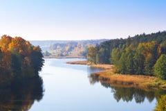 Осенний пейзаж пущи на озере Стоковые Фото
