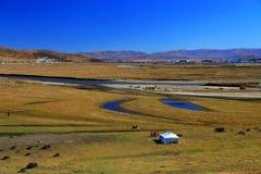 Осенний пейзаж плато Цинхая - Тибета Стоковые Изображения
