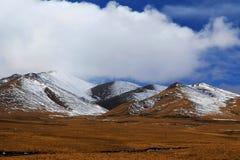 Осенний пейзаж плато Цинхая - Тибета Стоковая Фотография RF