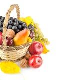 осенний плодоовощ корзины Стоковое Изображение RF