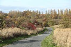 Осенний путь в Германии стоковое изображение