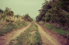 Осенний сельский путь стоковое фото rf