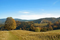 Осенний солнечный ландшафт Стоковые Изображения RF