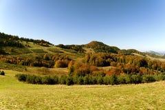 Осенний солнечный ландшафт Стоковое Фото