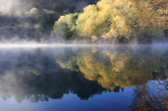 осенний туман над водой стоковые фото