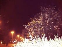 Осенняя ночь с растительностью и уличными светами иллюстрация штока