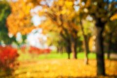 Осенняя предпосылка парка стоковая фотография rf