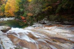 Осенью потока Стоковая Фотография RF