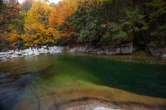 Осенью потока Стоковое Изображение RF