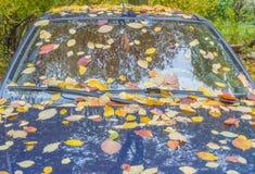Осенью припаркованного автомобиля покрытого с листьями Стоковые Фото