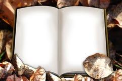 осень альбома Стоковые Фотографии RF