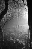 осень Англия Великобритания wycollar Стоковое Фото
