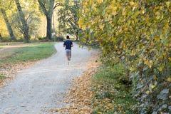 Осень, бегун в пути Стоковые Изображения