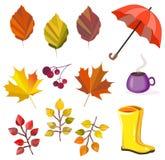 Осень вектора, собрание падения, набор Листва, листья, зонтик, ботинки, ягоды, кофе Цвета осени Большое собрание для вашего дизай бесплатная иллюстрация