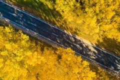 Осень Взгляд сверху дороги предпосылка больше моего перемещения портфолио Дорога в желтом лесе падения стоковое изображение