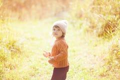 Осень внешняя, девушка малыша идя в поле Стоковое Изображение RF