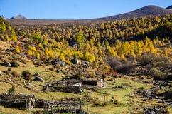 Осень во время поездки к Сычуань, Китаю Стоковое фото RF