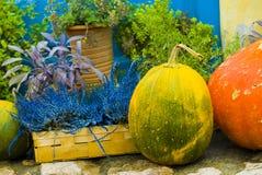 осень все еще Стоковое Изображение RF