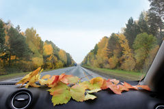 Осень в автомобиле Стоковые Фотографии RF