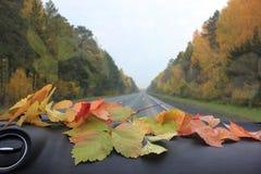 Осень в автомобиле Стоковое Изображение RF