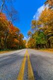 Осень в Висконсине Стоковое Фото