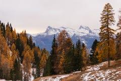 Осень в горах приближает к Cortina, Италии Стоковое Изображение