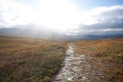 Осень в горах Стоковые Изображения