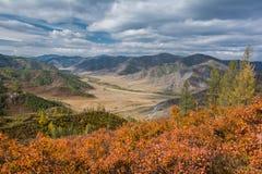 Осень в горах Altai Стоковые Фото