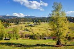 Осень в горах, carpathians Стоковые Фотографии RF