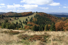 Осень в горах Javorniky стоковая фотография rf