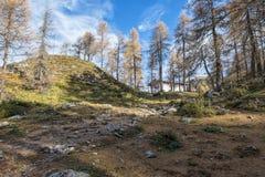 Осень в горных вершинах tha Стоковая Фотография