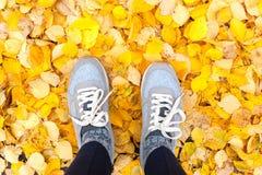 Осень в городе Современные тапки с желтыми листьями падения Стоковые Фото