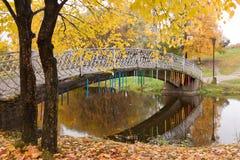 Осень в городе стоковая фотография rf