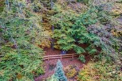 Осень в Гдыне Стоковые Фотографии RF