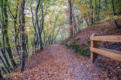 Осень в Гдыне Стоковое Изображение